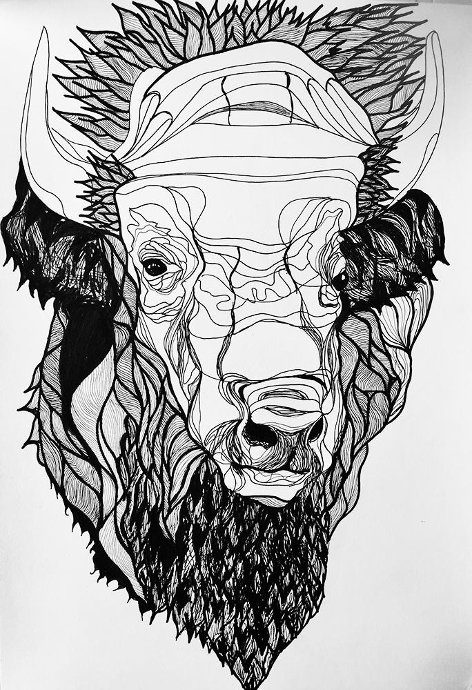 Tannage de la peau de bison